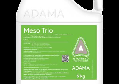 Adama Meso Trio