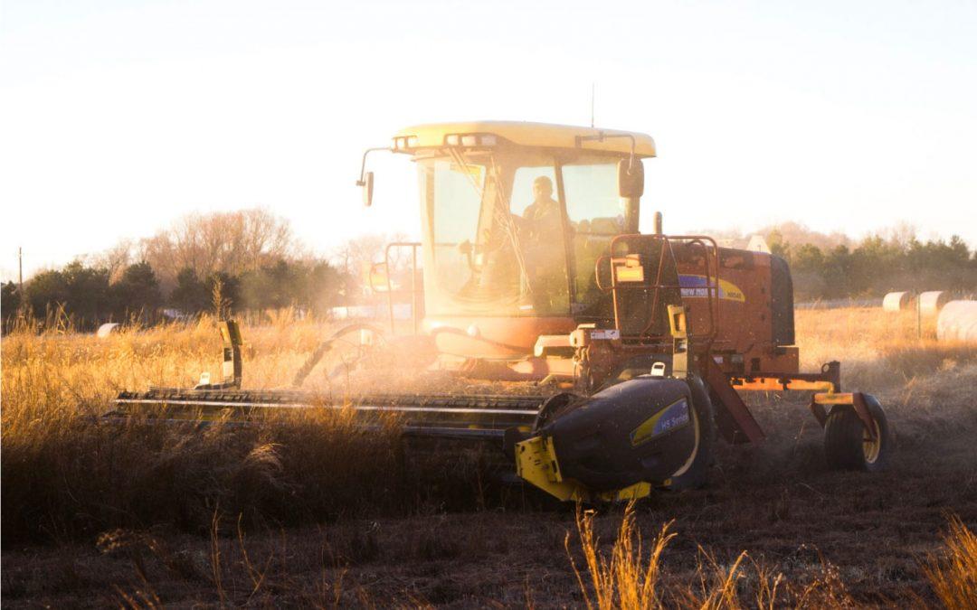 Modern Mezőgazdaság: a szenzorok, amelyek teljesen felmérik a talaj állapotát